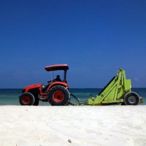 beach-651601_1280